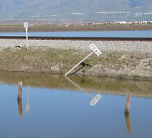 Alviso by the Bay by SassyPhotos