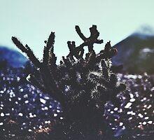 Wild West by Daniel Montero