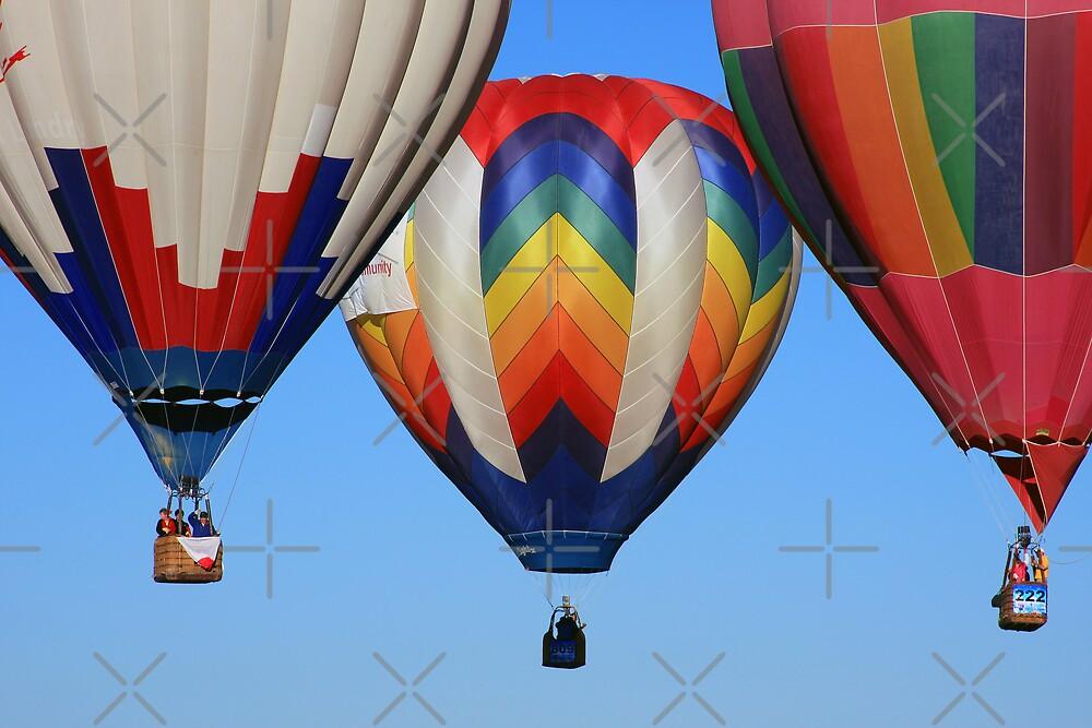 Balloons Rising by CarolM