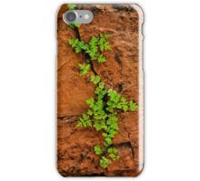 Life in the Canyon 1 iPhone Case/Skin