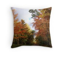Back Country Autumn Road Throw Pillow