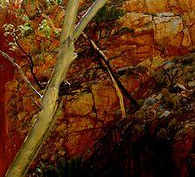 Love amongst the rocks  by KimOZ