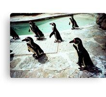Penguin party Canvas Print