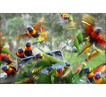 Colourful Cacophony Photographic Print
