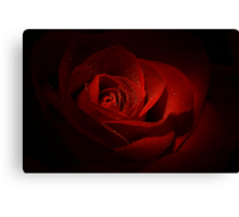 Sparkling Red Rose Canvas Print