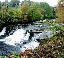 Aysgarth Falls by newbeltane
