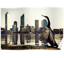 Darter and Perth skyline Poster