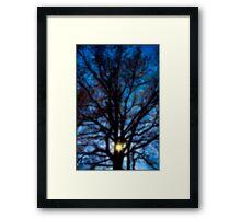 Untitled.00041 Framed Print