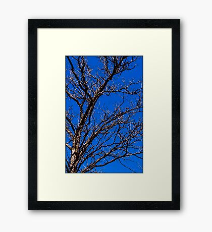 Untitled.00033 Framed Print