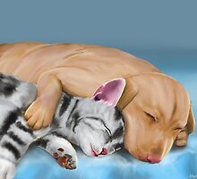 Grey Cat and Brown Dog Sleeping and Hugging by ibadishi