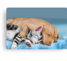 Grey Cat and Brown Dog Sleeping and Hugging Canvas Print