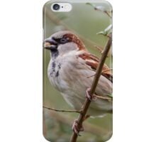 Lunchtime! iPhone Case/Skin