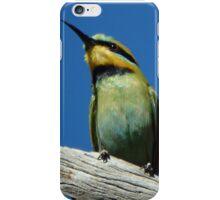 Rainbow Bee-eater iPhone Case/Skin