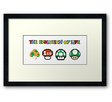 The Evolution of Life Framed Print