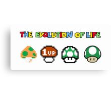 The Evolution of Life Canvas Print