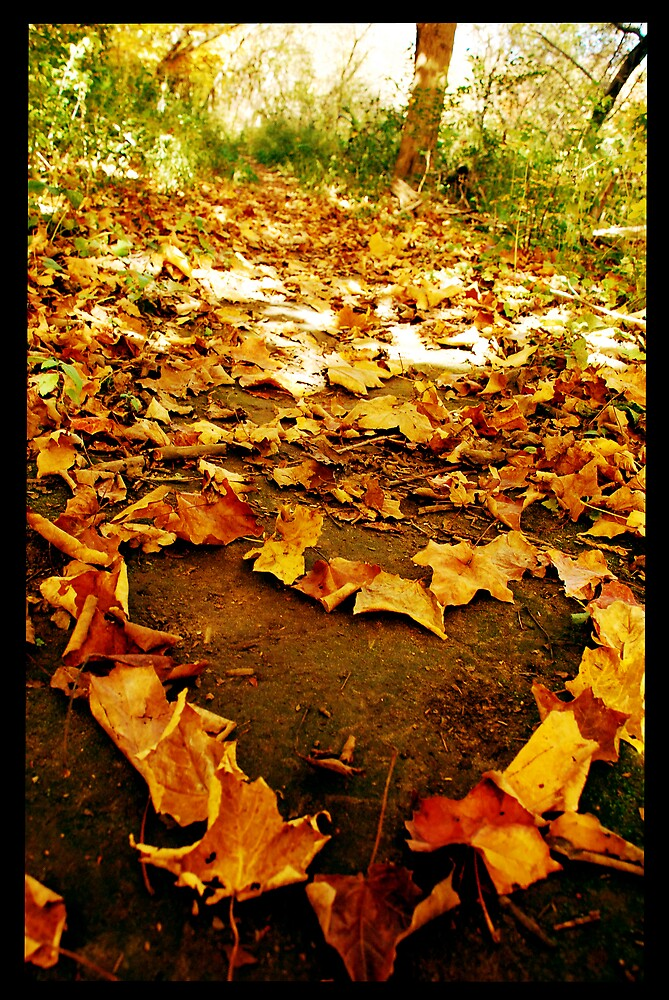 Leaves Of Love by lisabella