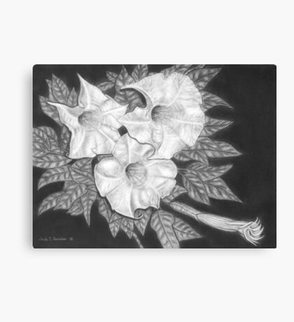 Trio of Heavenly Blossoms Canvas Print