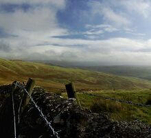 Dyke and fence at Witchie Knowe by Ranald