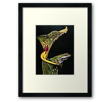From the Pulpit Framed Print