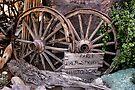 Early Palm Springs Historical by Jo Nijenhuis