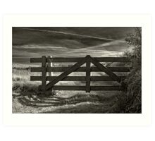 Over The Fence Art Print