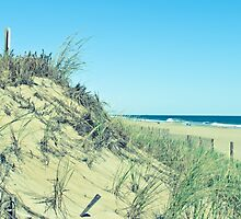 Atlantic Sand Dunes - Ocean City by JerryINOCMD