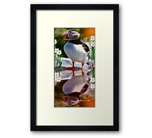 THE NEWFOUNDLAND PUFFIN Framed Print