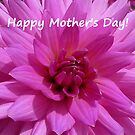 Dahlia - Happy Mother's Day! by Evelyn Laeschke