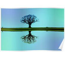 Blue tree symmetry Poster