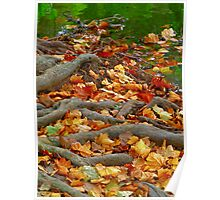 Fall Is Upon Us Poster