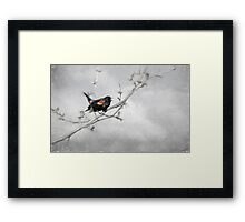 A Song Of Spring Framed Print