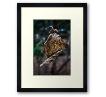 Rolling into Winter Framed Print