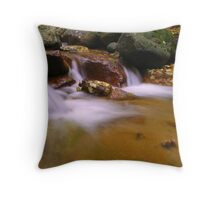 Fall In Cheyenne Canyon Throw Pillow