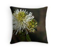 Aust Native Throw Pillow