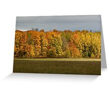 ~ Golden Acres ~ Greeting Card