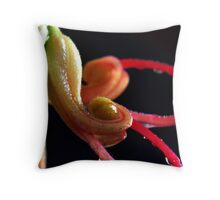 'Grevillea' Throw Pillow