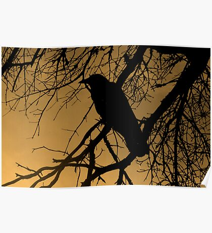Creepy Crow Poster