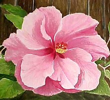 Double Pink, 2003 watercolor by Ginny Schmidt