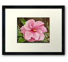Double Pink, 2003 watercolor Framed Print
