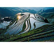 Rice Terraces 2(Banaue,Phil.) Photographic Print