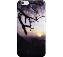 Tree branch in silhouette against sunset dusk evening sky square medium format film analog photographers iPhone Case/Skin