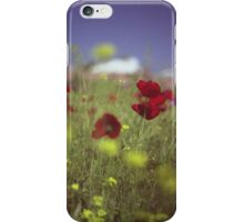Red wild flowers poppies on hot summer day in urban city wasteland Hasselblad square medium format film analogue photo iPhone Case/Skin