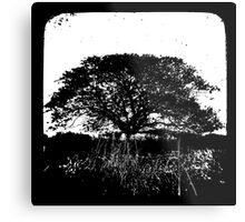 Another World TtV Metal Print