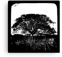 Another World TtV Canvas Print
