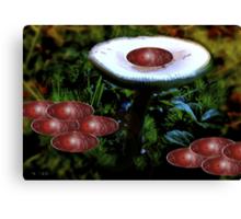 Autumn Olives On a Mushroom  *featured Canvas Print