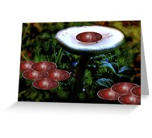 Autumn Olives On a Mushroom  *featured Greeting Card