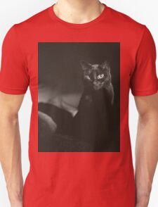 Film noir portrait of black cat Hasselblad square medium format film analogue photograph handmade darkroom print T-Shirt