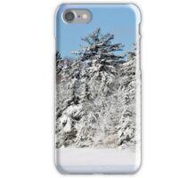 Nature's Spray Foam! iPhone Case/Skin