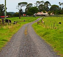 Country Road by Evita