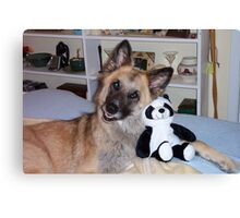 Cody and his Pal the Panda Canvas Print
